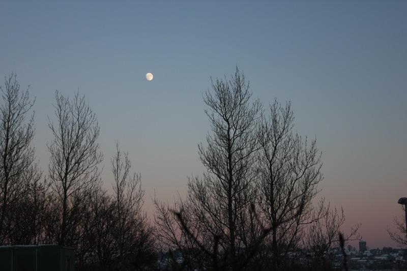 Maane_solnedgang_aalborg