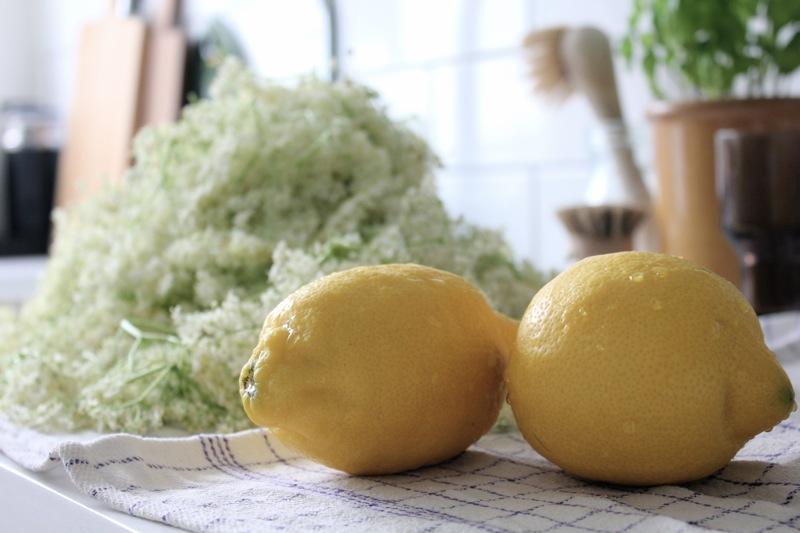 Citroner_hyldeblomst