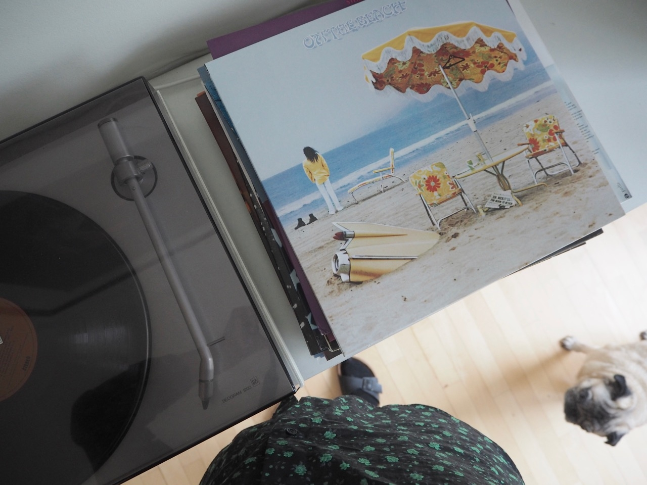 Neil_Young_on_the_beach_vinyl