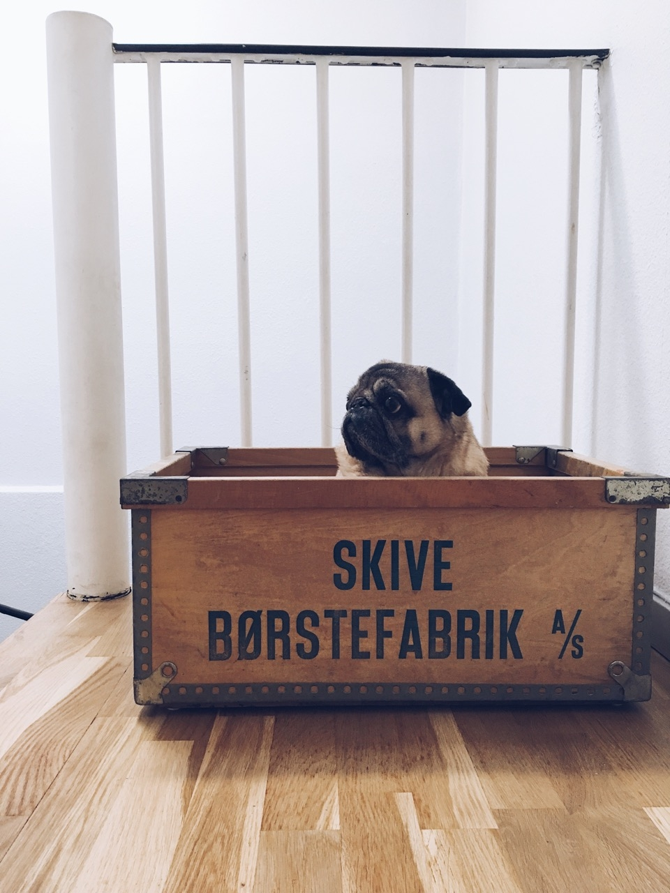 Anton_skive_boerstefabrik