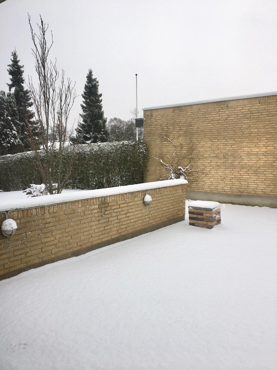 Vinter_have